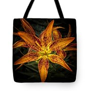 Slippin' Through The Darkness Tote Bag