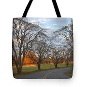Sloan Park Sunset Tote Bag