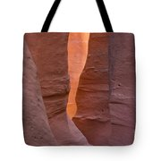 Slot In Palo Duro Canyon 110213.45 Tote Bag