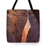 Slot In Palo Duro Canyon 110213.61 Tote Bag