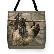 Sloth Tote Bag by Ellen Henneke