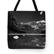 Slough Lake 3 Bw Tote Bag by Roger Snyder