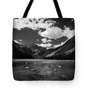 Slough Lake 5 Bw Tote Bag