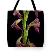 Slowly Fading Tote Bag