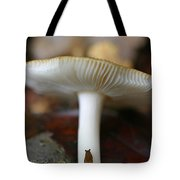 Slugs And Mushrooms Tote Bag