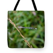 Small Blue Dragonfly Tote Bag