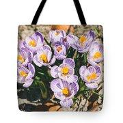 Small Crocus Flower Field Tote Bag