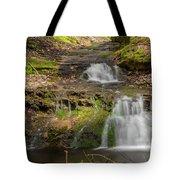 Small Falls At Parfrey's Glen Tote Bag