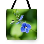 Small Fly On A Small Wildflower - Featured 3 Tote Bag