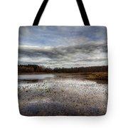 Small Lake Scene Tote Bag