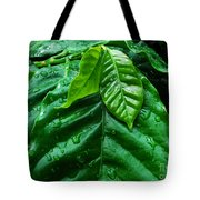 Small Leaves With Water Drops Tote Bag