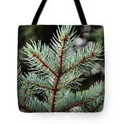 Small Pine Tote Bag