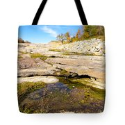 Small Pond Devonian Fossil Gorge Tote Bag
