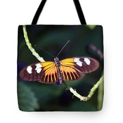 Small Postman Butterfly Tote Bag