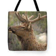 Small Roof Rack Tote Bag