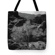 Small Tree Tote Bag