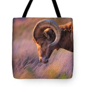 Smell The Wind Tote Bag