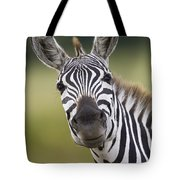 Smiling Burchells Zebra Tote Bag