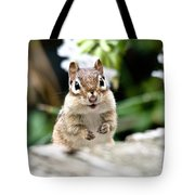 Smiling Chipmunk Tote Bag