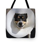 Smiling Dog Tote Bag