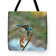 Smiling Dragon Fly Tote Bag