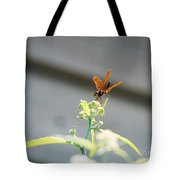 Smiling Dragonfly 1 Tote Bag