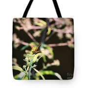 Smiling Dragonfly 3 Tote Bag
