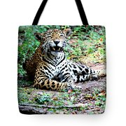 Smiling Jaguar Tote Bag