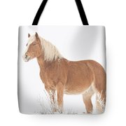 Smiling Palomino In The Snow Tote Bag