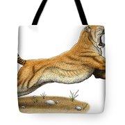 Smilodon Saber-toothed Tiger Tote Bag