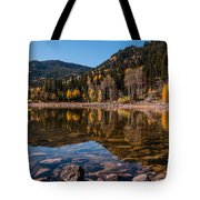 Smith And Morehouse Reflections Tote Bag