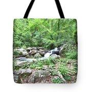 Smith Creek Downstream Of Anna Ruby Falls - 2 Tote Bag