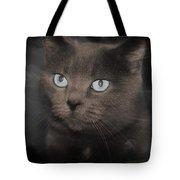 Smokey Cat Tote Bag