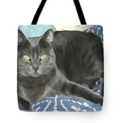 Smokey On A Blue Blanket Tote Bag