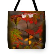 Smoky Mountain Color II Tote Bag