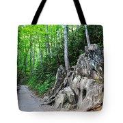 Smoky Mountain Hike Tote Bag