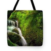 Smoky Mountain Stream And Boulders E223 Tote Bag