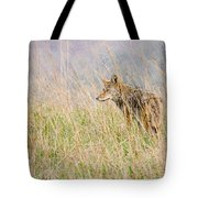 Smoky Mountains Coyote Tote Bag