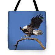Smooth Landing 6 Tote Bag