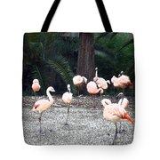 Smudgestick Flamingos Tote Bag