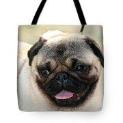 Smug Pug Tote Bag