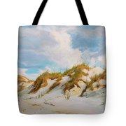 Smyrna Dunes Tote Bag