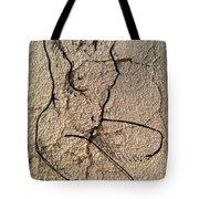 Sn 2 A Tote Bag