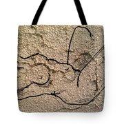 Sn 2 B Tote Bag