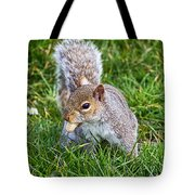Snack Time For Squirrels Tote Bag