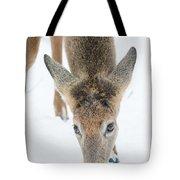 Snacking Deer Tote Bag