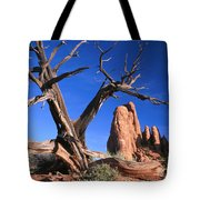 Snag At  Fiery Furnace Labyrinth Arches Tote Bag