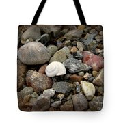 Snail Among The Rocks Tote Bag