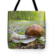 Snail Creeping Over A Forest Path Tote Bag