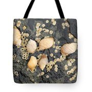 Snail Family Vacation Tote Bag